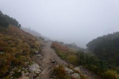 halny turystyczny ślad w jesieni zakrywającej w mgle Obrazy Stock