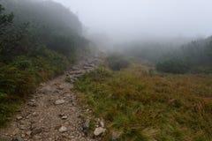 halny turystyczny ślad w jesieni zakrywającej w mgle Zdjęcia Royalty Free