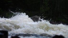 Halny woda rzeczna przepływ zbiory wideo