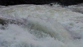 Halny woda rzeczna przepływ zdjęcie wideo