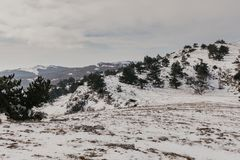 Halny zima śnieg - wizerunek zdjęcie royalty free