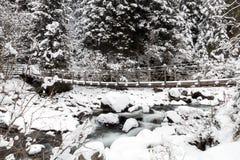 Halny zima krajobraz zdjęcia royalty free