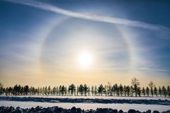 Halo around sun on blue sky in winter time. And trees stock photography