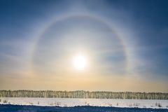 Halo around sun on blue sky in winter time. And trees royalty free stock image