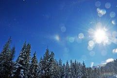 Halo d'hiver Photographie stock libre de droits