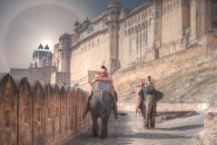 Halo over elephants Amer Fort Jaipur. India royalty free stock photography