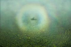 The halo of the plane`s shadow over the jungle, taken from the plane. Nature Of South America stock photos