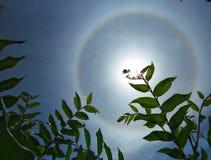 Halo solar fotografía de archivo