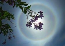 Halo solar imagen de archivo