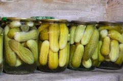 halofit konserwować zima domowa jarzynowa Zalewy w słojach Zdjęcie Stock