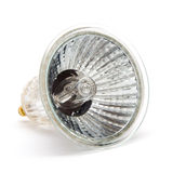 Halogen bulb. Isolated on white background royalty free stock photography