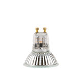 Halogen lamp isolated Stock Images