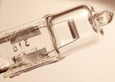 Halogen Lightbulb Royalty Free Stock Image