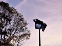 Halogen Street Light Stock Photo