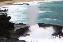 Halona blåshål & surfare Arkivfoton