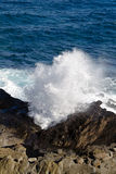 Halona blowhole Stock Images
