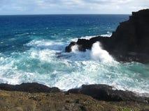 Halona liten vik, Oahu, Hawaii Arkivbild