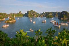 Halong海湾,越南 库存图片