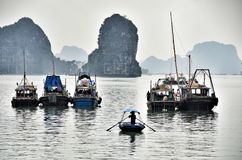 Halong bay Royalty Free Stock Images