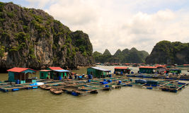 Halong Bay Fishing Village Stock Images
