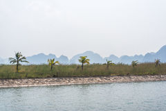 Halong bay palm view. Vietnam Stock Images
