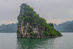 Halong Bay, rock on the water. Dragon Rocks in the predawn haze Stock Photo