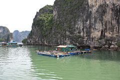Halong Bay, Vietnam. Stock Photography