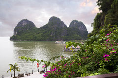 Halong Bay in Vietnam. Royalty Free Stock Image