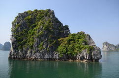 Halong bay,Vietnam Royalty Free Stock Photo