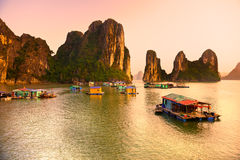 Halong zatoka, Wietnam. Zdjęcie Stock