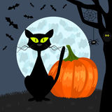 Haloween background. With pumpkin, cat, bats and moon Stock Photo