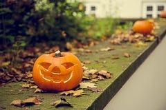 Haloween Pumpkin. Heloween pumpkins in autumn park Stock Photography