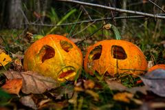 About Haloween Pumpkins royalty free stock image