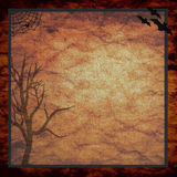 Haloween spooky tree background Royalty Free Stock Photography