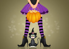 Haloween witch and black cat. Illustration of Haloween witch and black cat Royalty Free Stock Photos