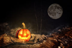 Haloweenpumkin i månskenet Arkivbild