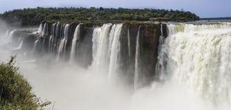 Hals för jäkel` s i Iguazuet Falls arkivfoton