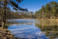 Halsabschneiderischer Teich Rambouillet Forest France Lizenzfreie Stockfotos