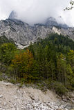 Halsalp, national park Berchtesgaden, Germany Royalty Free Stock Photos