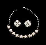 halsband för leaf för smycken för dräktdesignörhängen arkivfoton