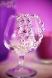 Halsband i exponeringsglas royaltyfri fotografi