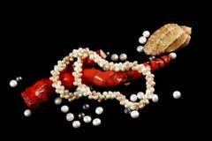 Halsband, korall, p?rlor och skal p? en svart bakgrund arkivbild