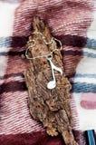Halsband med den musikaliska anmärkningen Royaltyfria Bilder