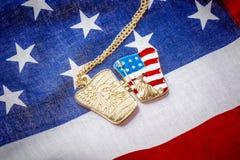 Halsband med statyn av frihet på amerikanska flaggan Royaltyfri Bild