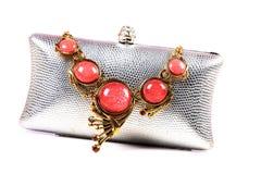 Halsband och handväska Royaltyfri Foto