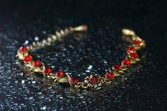Halsband op een zwarte achtergrond Royalty-vrije Stock Afbeelding