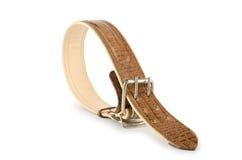 Halsband op het wit Royalty-vrije Stock Foto's