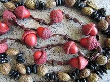 Halsband som göras av ekollonar och frö arkivfoto