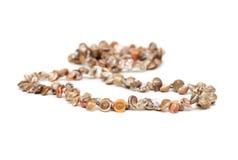 Halsband van overzeese shell wordt gemaakt die stock foto's