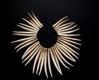 Halsband van tanden van een roofdier Stock Foto's